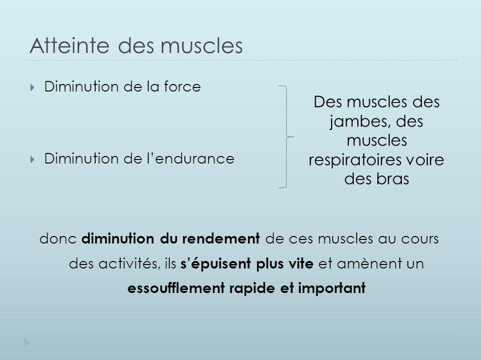 Atteinte des muscles  Diminution de la force  Diminution de l'endurance donc diminution du rendement de ces muscles au cours des activités, ils s'ép