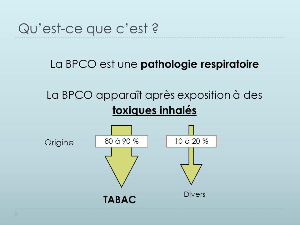 Qu'est-ce que c'est ? La BPCO est une pathologie respiratoire La BPCO apparaît après exposition à des toxiques inhalés 80 à 90 %10 à 20 % TABAC Divers