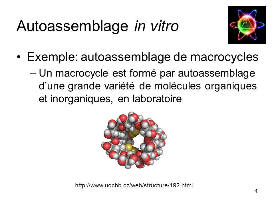 4 Autoassemblage in vitro Exemple: autoassemblage de macrocycles –Un macrocycle est formé par autoassemblage d'une grande variété de molécules organiques et inorganiques, en laboratoire http://www.uochb.cz/web/structure/192.html