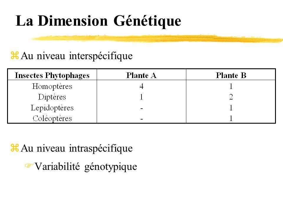 La Dimension Génétique zAu niveau interspécifique zAu niveau intraspécifique  Variabilité génotypique