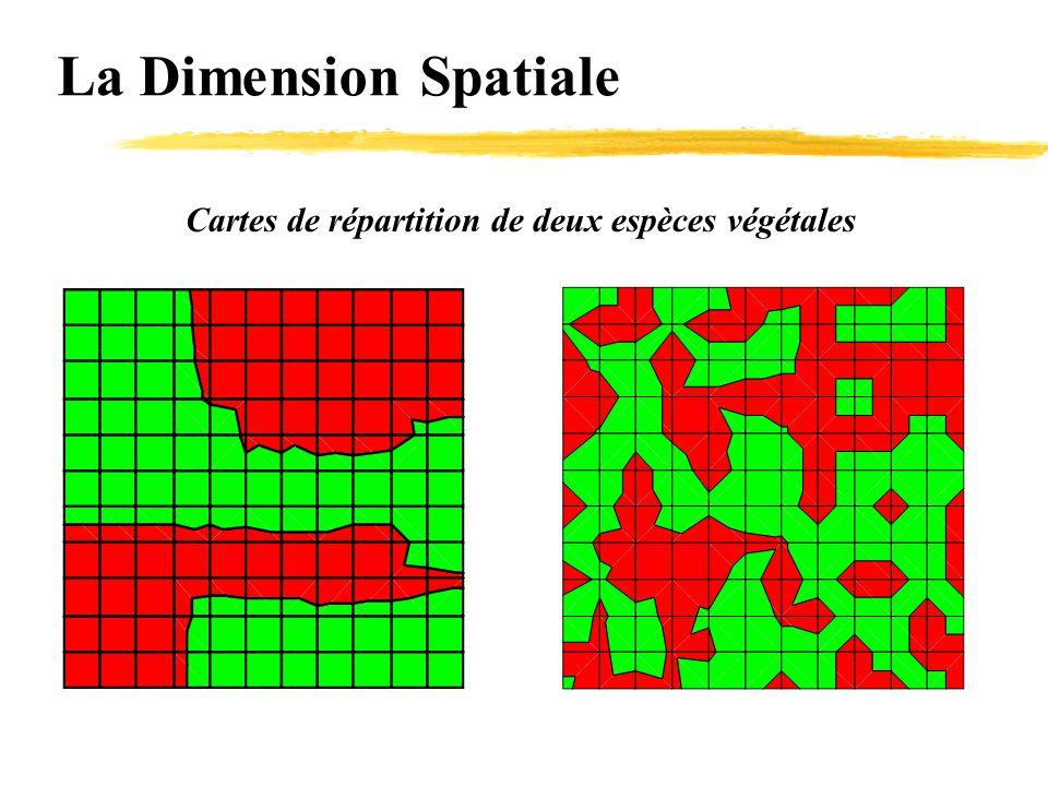 La Dimension Spatiale Cartes de répartition de deux espèces végétales