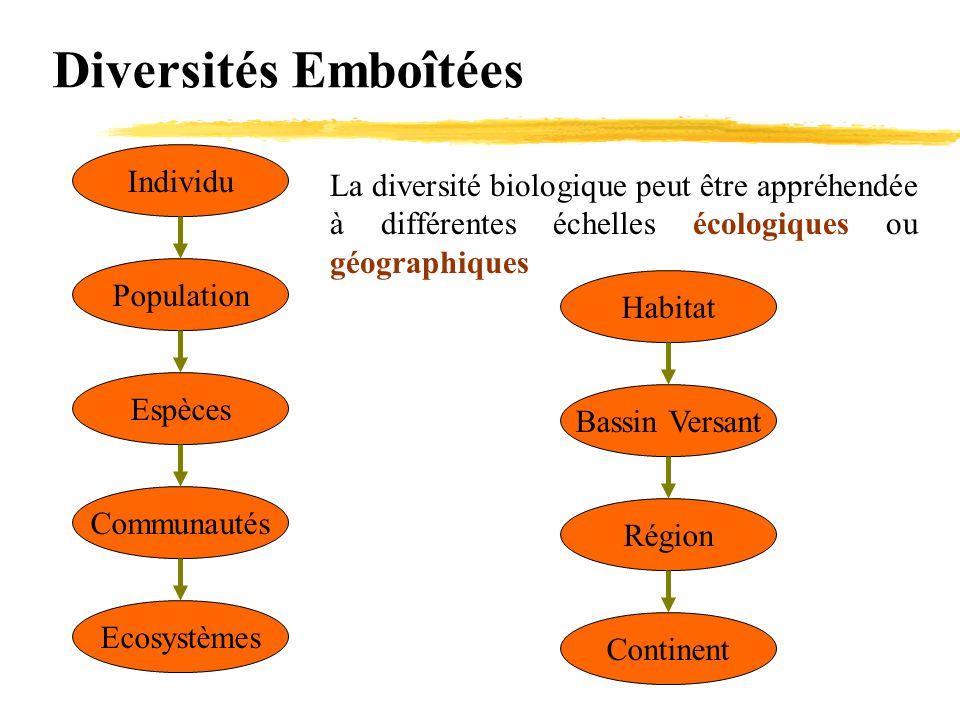 Diversités Emboîtées Individu Population Espèces Communautés Ecosystèmes La diversité biologique peut être appréhendée à différentes échelles écologiq