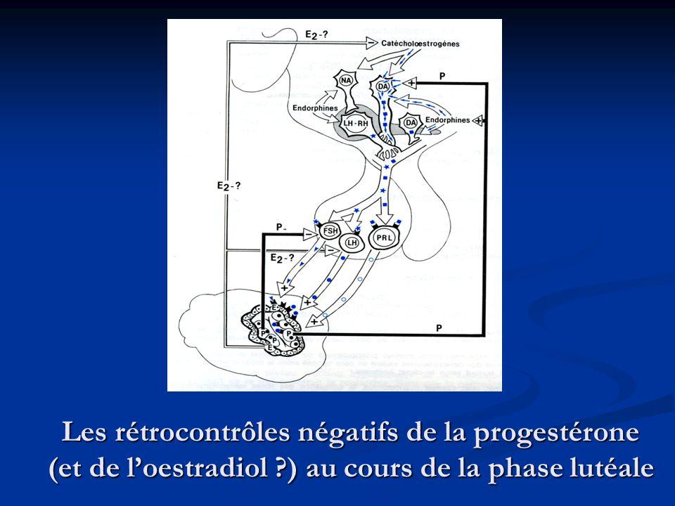 Les rétrocontrôles négatifs de la progestérone (et de l'oestradiol ?) au cours de la phase lutéale