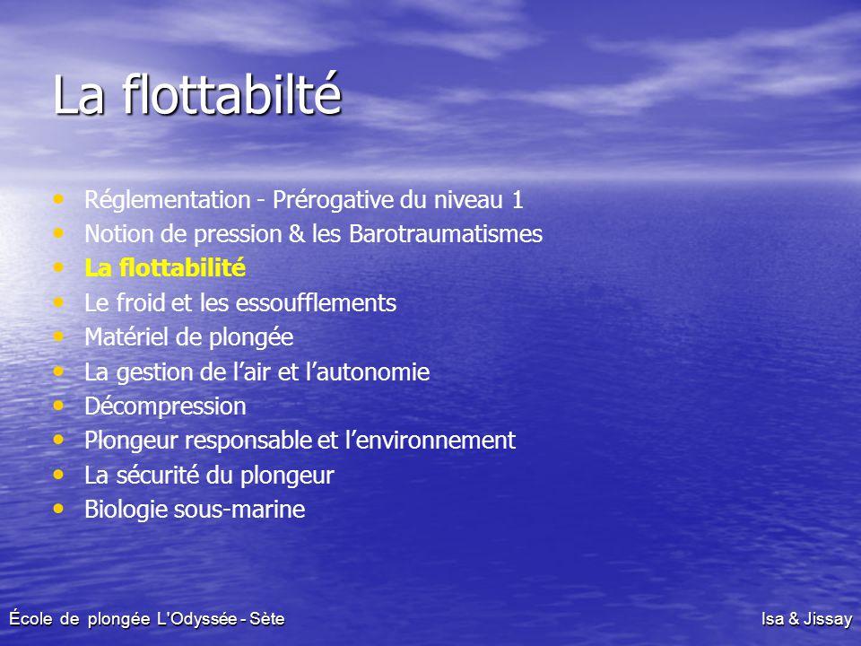 La flottabilté Réglementation - Prérogative du niveau 1 Notion de pression & les Barotraumatismes La flottabilité Le froid et les essoufflements Matér