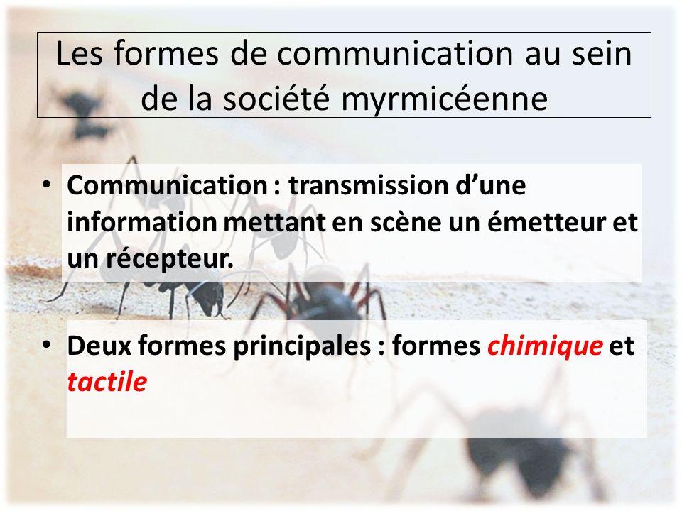 Les formes de communication au sein de la société myrmicéenne Communication : transmission d'une information mettant en scène un émetteur et un récept