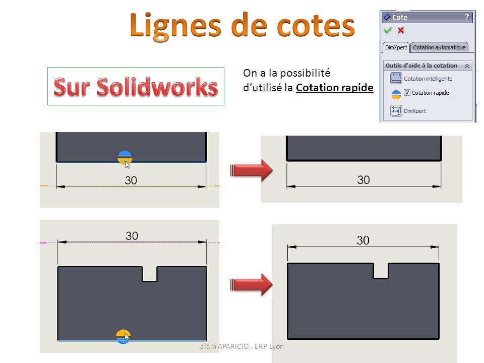 On a la possibilité d'utilisé la Cotation rapide alain APARICIO - ERP Lyon