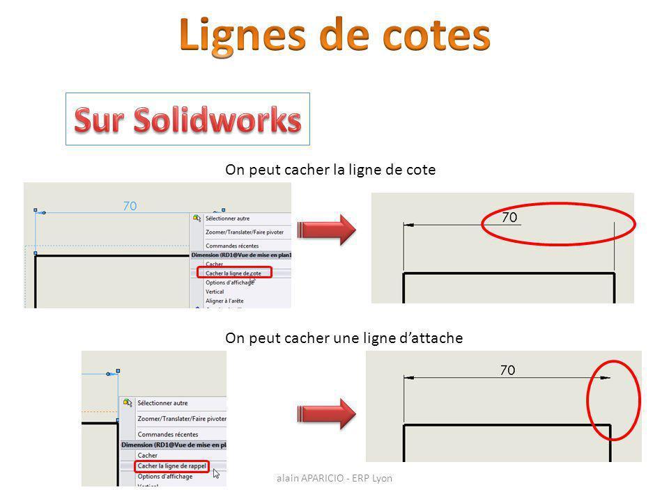 On peut cacher la ligne de cote On peut cacher une ligne d'attache alain APARICIO - ERP Lyon