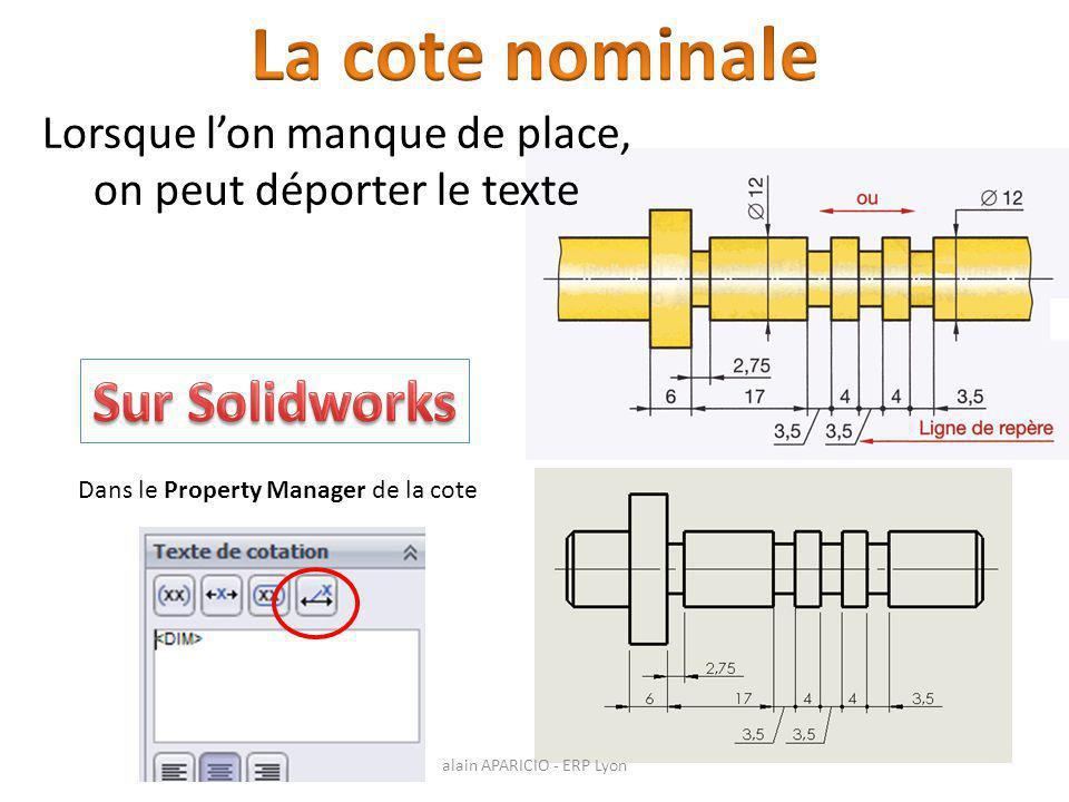 Lorsque l'on manque de place, on peut déporter le texte Dans le Property Manager de la cote alain APARICIO - ERP Lyon