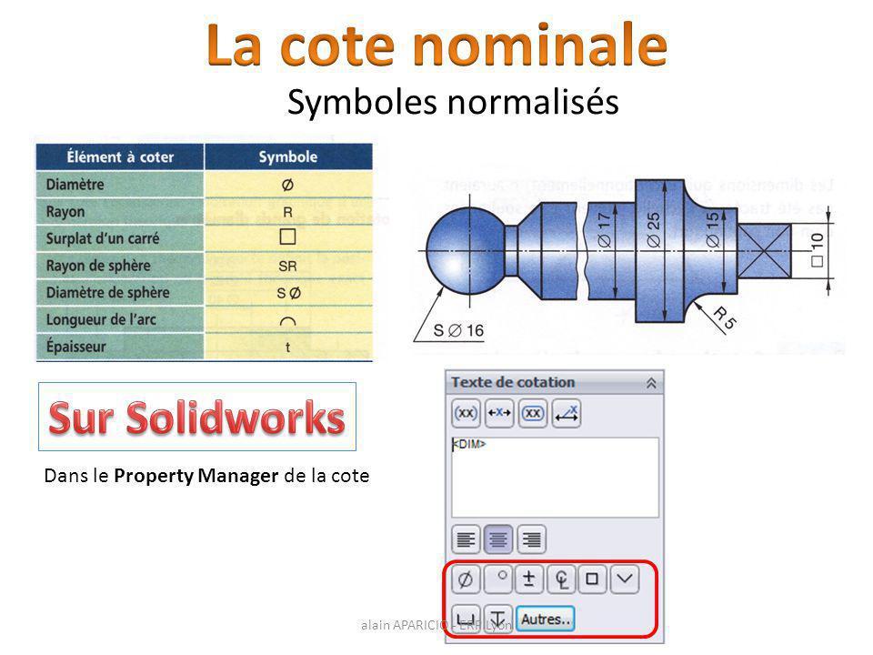 Dans le Property Manager de la cote Symboles normalisés alain APARICIO - ERP Lyon