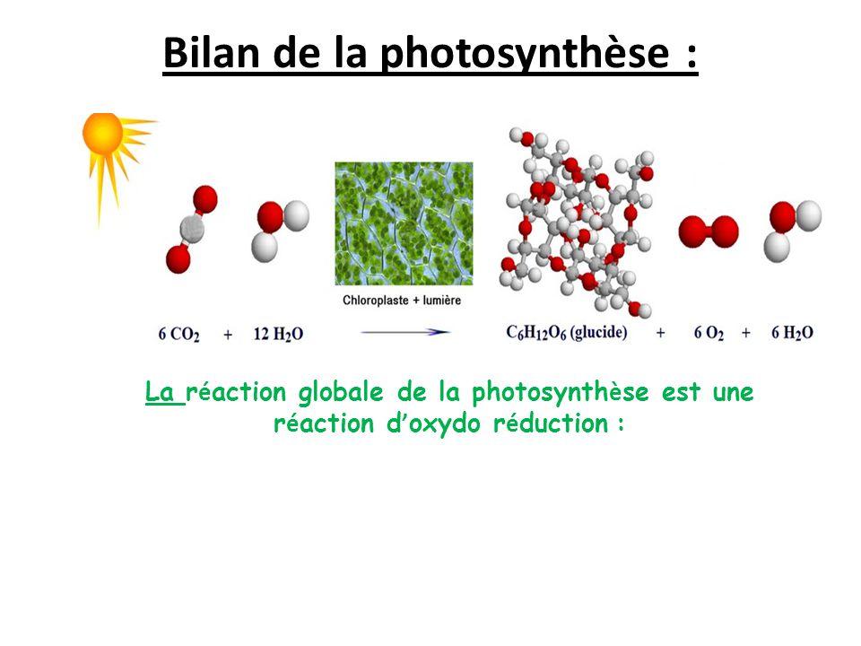 Bilan de la photosynthèse : La r é action globale de la photosynth è se est une r é action d ' oxydo r é duction :