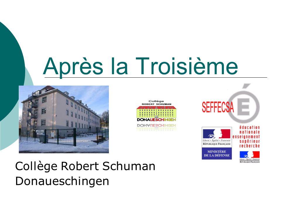 Collège Robert Schuman Donaueschingen Après la Troisième
