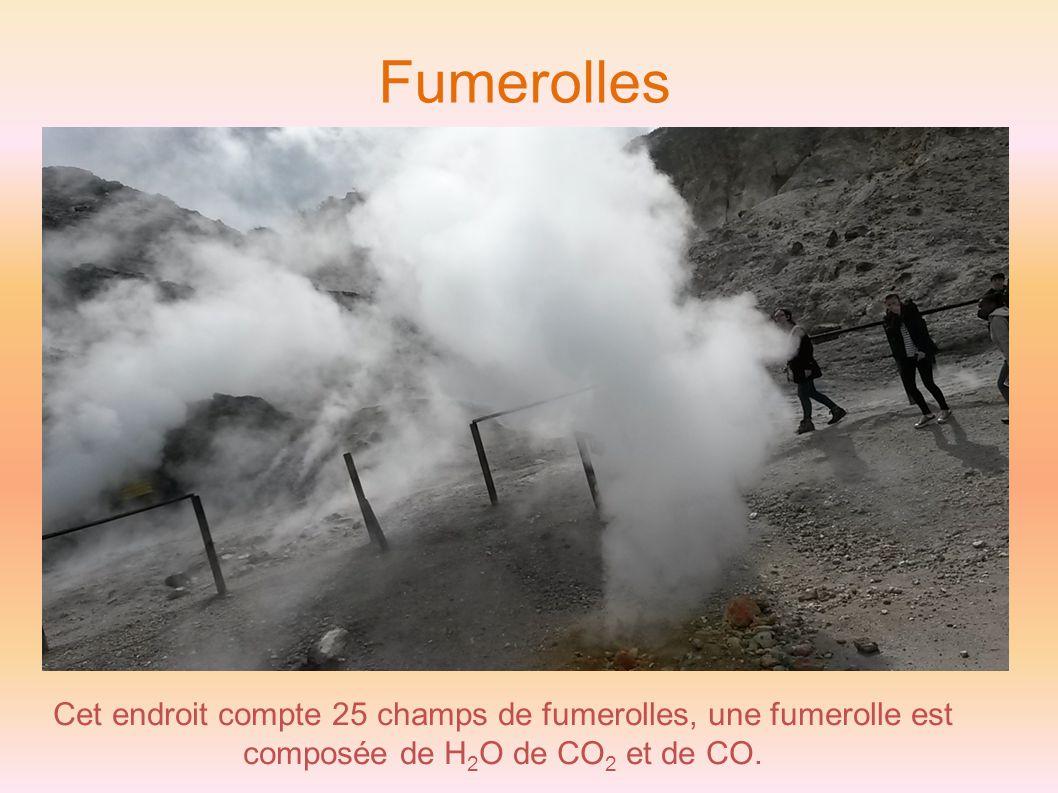 Fumerolles Cet endroit compte 25 champs de fumerolles, une fumerolle est composée de H 2 O de CO 2 et de CO.