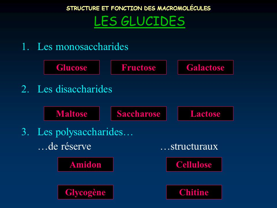 STRUCTURE ET FONCTION DES MACROMOLÉCULES LES GLUCIDES 1.Les monosaccharides 2.Les disaccharides 3.Les polysaccharides… …de réserve…structuraux Chitine AmidonCellulose Glycogène LactoseSaccharoseMaltose GalactoseFructoseGlucose