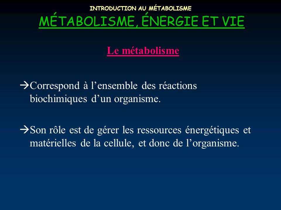 MÉTABOLISME, ÉNERGIE ET VIE  Correspond à l'ensemble des réactions biochimiques d'un organisme.  Son rôle est de gérer les ressources énergétiques e