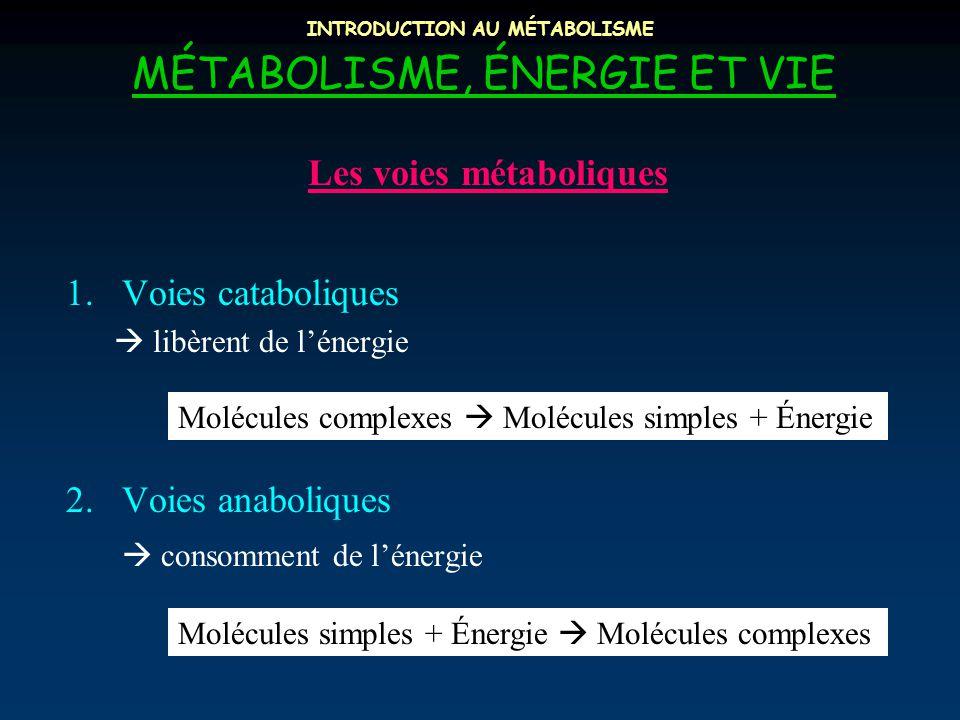 INTRODUCTION AU MÉTABOLISME MÉTABOLISME, ÉNERGIE ET VIE 1.Voies cataboliques  libèrent de l'énergie 2.Voies anaboliques  consomment de l'énergie Les voies métaboliques Molécules complexes  Molécules simples + Énergie Molécules simples + Énergie  Molécules complexes
