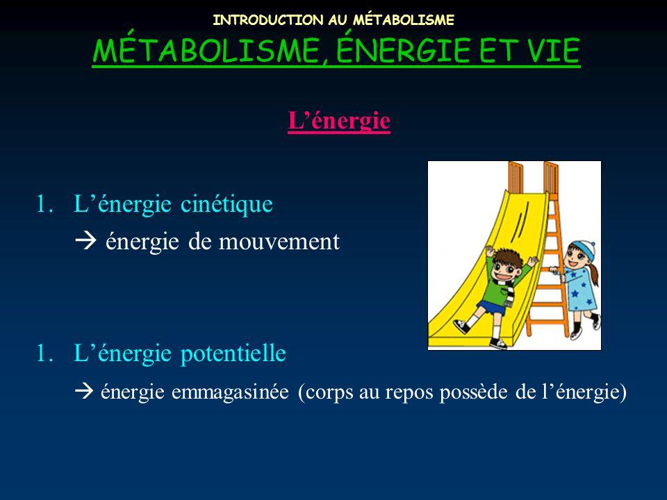 INTRODUCTION AU MÉTABOLISME MÉTABOLISME, ÉNERGIE ET VIE L'énergie 1.L'énergie cinétique  énergie de mouvement 1.L'énergie potentielle  énergie emmagasinée (corps au repos possède de l'énergie)