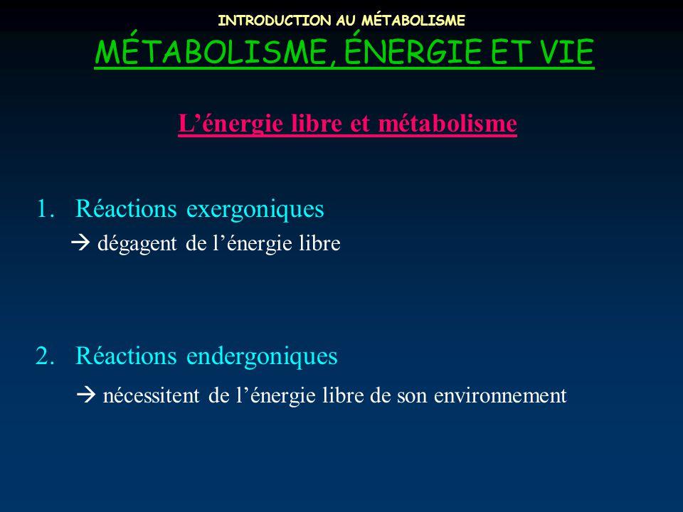 INTRODUCTION AU MÉTABOLISME MÉTABOLISME, ÉNERGIE ET VIE L'énergie libre et métabolisme 1.Réactions exergoniques  dégagent de l'énergie libre 2.Réactions endergoniques  nécessitent de l'énergie libre de son environnement