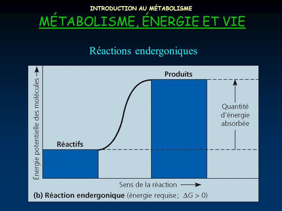INTRODUCTION AU MÉTABOLISME MÉTABOLISME, ÉNERGIE ET VIE Réactions endergoniques