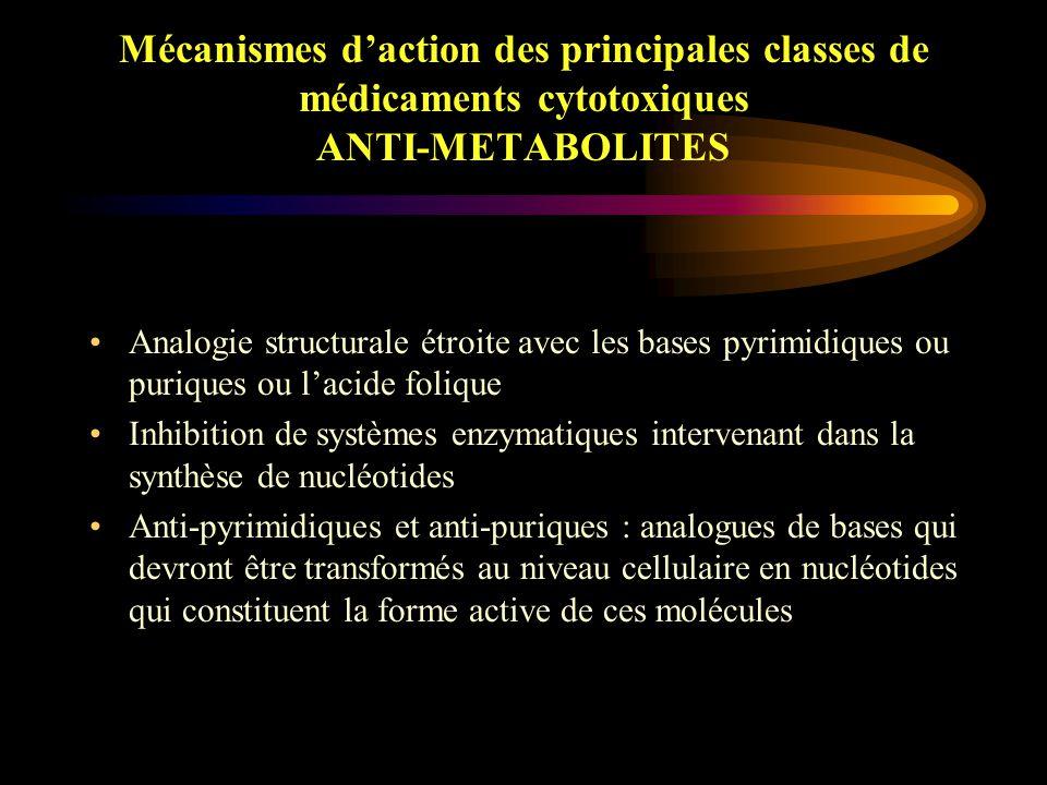 Mécanismes d'action des principales classes de médicaments cytotoxiques AGENTS INTERCALANTS Mélange de différents peptides de faible poids moléculaires Agent intercalant et scindant Cassure d'ADN simple, et double brin Bléomycine