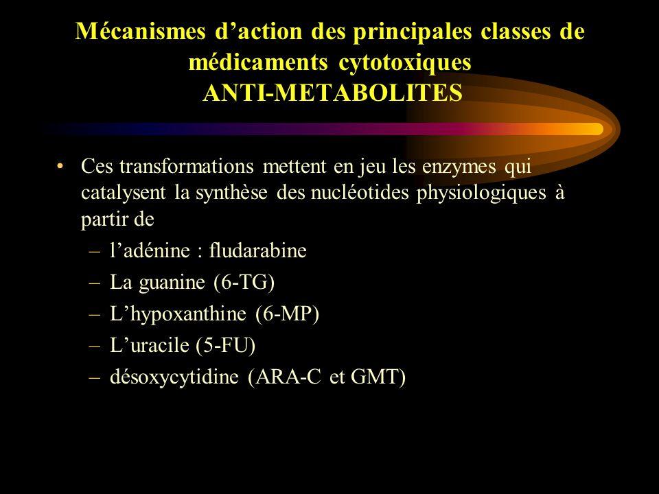 Mécanismes d'action des principales classes de médicaments cytotoxiques ANTI-METABOLITES Analogie structurale étroite avec les bases pyrimidiques ou puriques ou l'acide folique Inhibition de systèmes enzymatiques intervenant dans la synthèse de nucléotides Anti-pyrimidiques et anti-puriques : analogues de bases qui devront être transformés au niveau cellulaire en nucléotides qui constituent la forme active de ces molécules