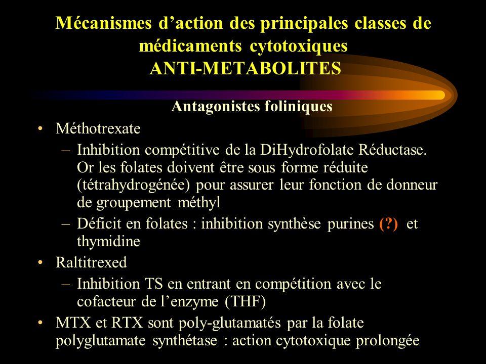 Mécanismes d'action des principales classes de médicaments cytotoxiques ANTI-METABOLITES Ces transformations mettent en jeu les enzymes qui catalysent la synthèse des nucléotides physiologiques à partir de –l'adénine : fludarabine –La guanine (6-TG) –L'hypoxanthine (6-MP) –L'uracile (5-FU) –désoxycytidine (ARA-C et GMT)
