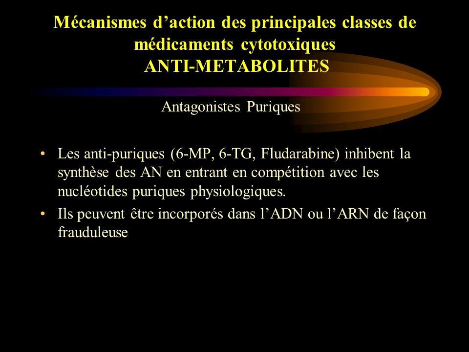 Mécanismes d'action des principales classes de médicaments cytotoxiques ANTI-METABOLITES Méthotrexate –Inhibition compétitive de la DiHydrofolate Réductase.