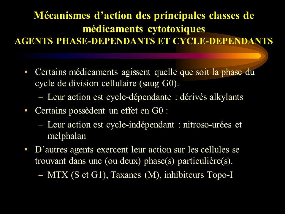 Mécanismes d'action des principales classes de médicaments cytotoxiques POISONS DU FUSEAU Ces médicaments interagissent avec la tubuline, protéine cytoplasmique qui existe sous deux formes : dimérique ou polymérisée.