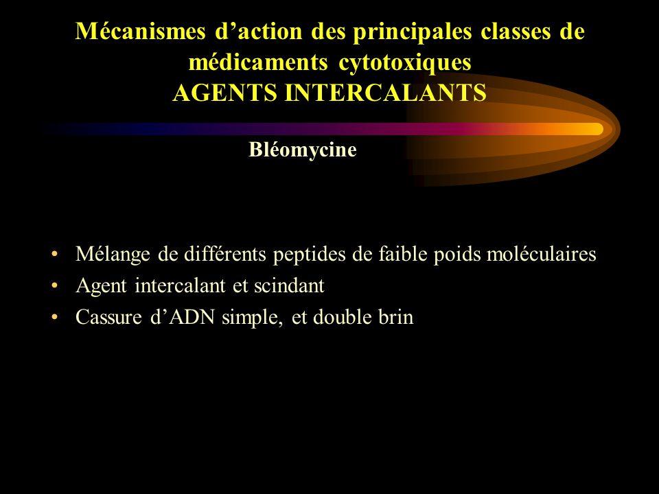Mécanismes d'action des principales classes de médicaments cytotoxiques AGENTS INTERCALANTS Anthracyclines et anthraquinones –Structure coplanaire : intercalation au sein de la double hélice  déformation, blocage transcription et réplication –Formation d'anions superoxyde capables d'interagir avec l'ADN –Activation des sphingomyélinases : formation de céramides qui déclenchent les processus apoptotiques Inhibiteurs des Topo-Isomérases
