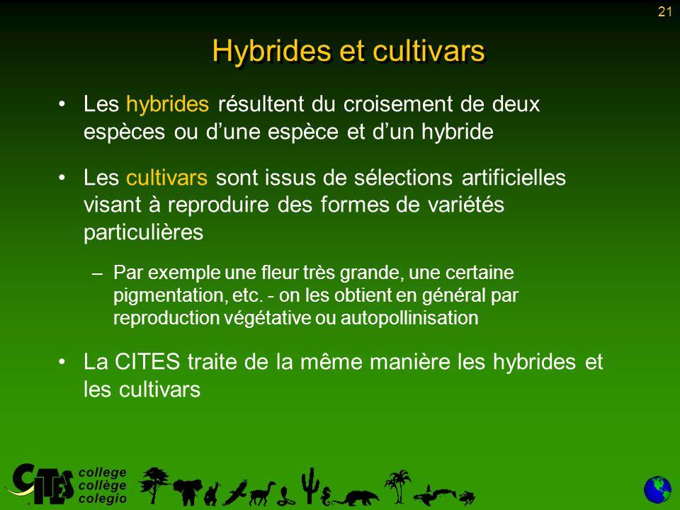 21 Hybrides et cultivars Les hybrides résultent du croisement de deux espèces ou d'une espèce et d'un hybride Les cultivars sont issus de sélections a