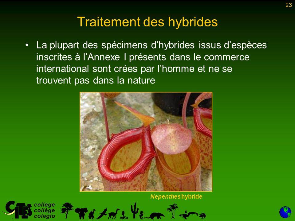 23 Traitement des hybrides Nepenthes hybride La plupart des spécimens d'hybrides issus d'espèces inscrites à l'Annexe I présents dans le commerce inte
