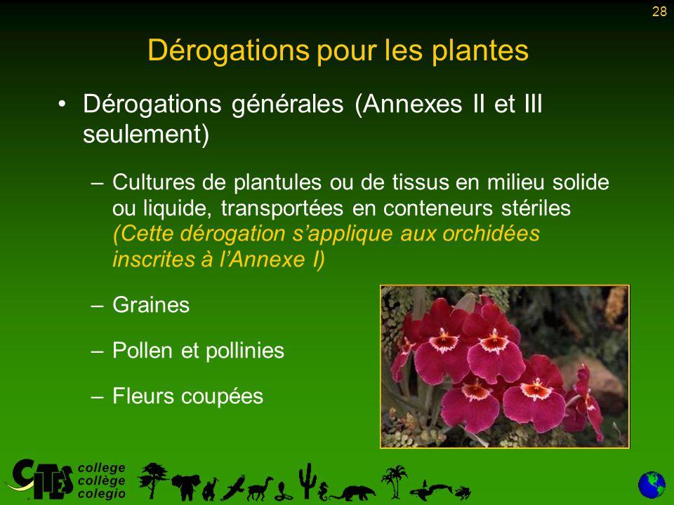 28 Dérogations pour les plantes Dérogations générales (Annexes II et III seulement) –Cultures de plantules ou de tissus en milieu solide ou liquide, t