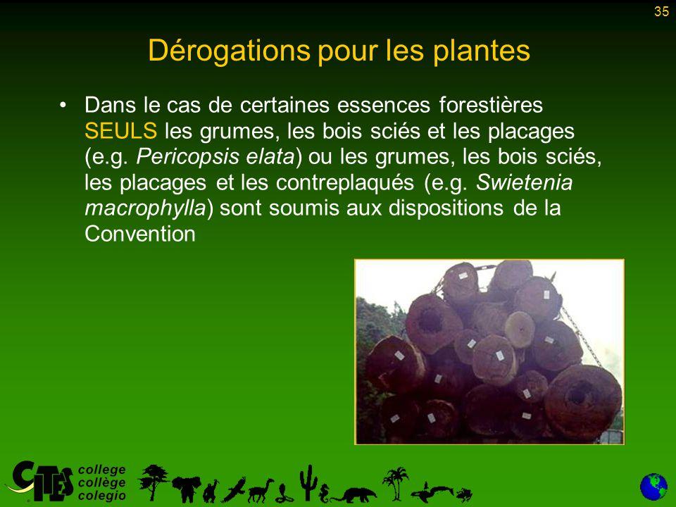 35 Dans le cas de certaines essences forestières SEULS les grumes, les bois sciés et les placages (e.g. Pericopsis elata) ou les grumes, les bois scié