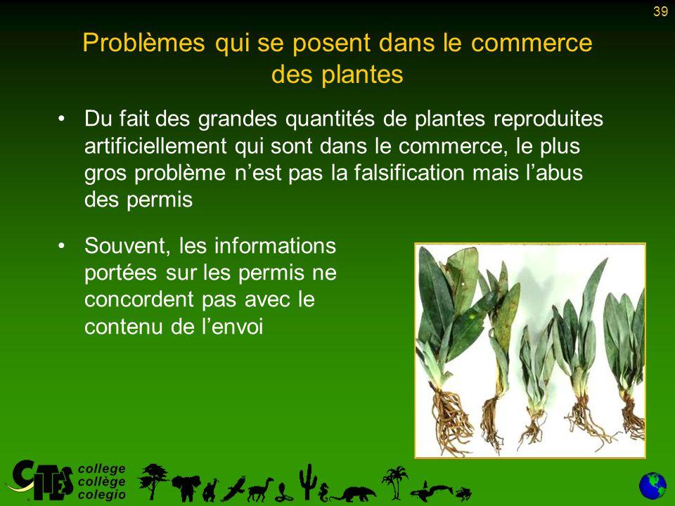 39 Problèmes qui se posent dans le commerce des plantes Du fait des grandes quantités de plantes reproduites artificiellement qui sont dans le commerc