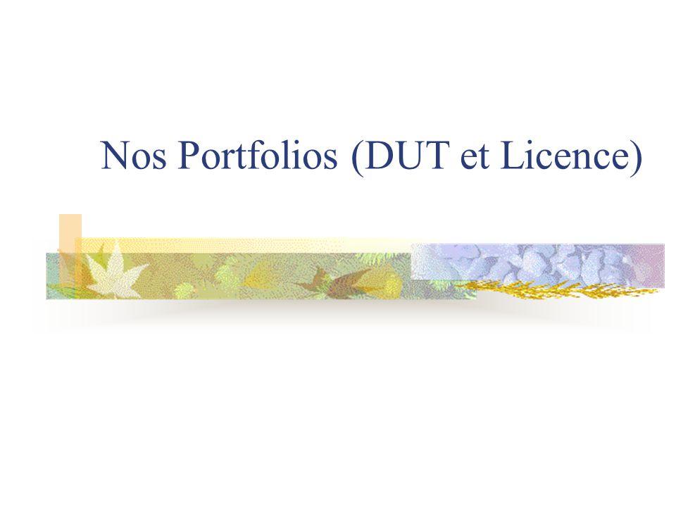 Nos Portfolios (DUT et Licence)