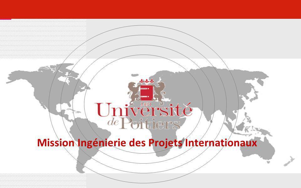 Mission Ingénierie des Projets Internationaux