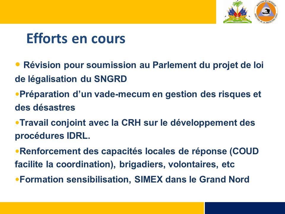 Révision pour soumission au Parlement du projet de loi de légalisation du SNGRD Préparation d'un vade-mecum en gestion des risques et des désastres Travail conjoint avec la CRH sur le développement des procédures IDRL.