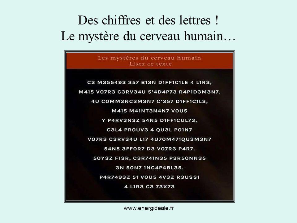 www.energideale.fr Des chiffres et des lettres ! Le mystère du cerveau humain…