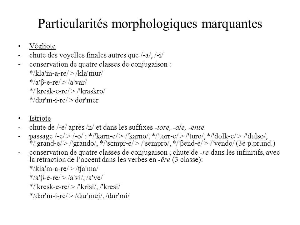 Particularités morphologiques marquantes Végliote -chute des voyelles finales autres que /-a/, /-i/ -conservation de quatre classes de conjugaison : *