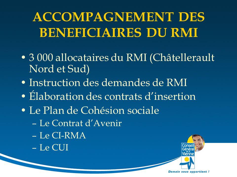 ACCOMPAGNEMENT DES BENEFICIAIRES DU RMI 3 000 allocataires du RMI (Châtellerault Nord et Sud) Instruction des demandes de RMI Élaboration des contrats