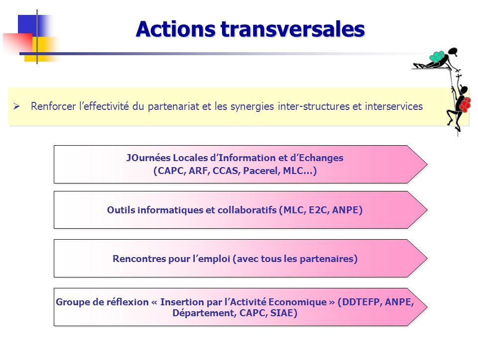 Actions transversales  Renforcer l'effectivité du partenariat et les synergies inter-structures et interservices JOurnées Locales d'Information et d'
