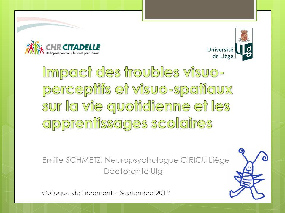 Emilie SCHMETZ, Neuropsychologue CIRICU Liège Doctorante Ulg Colloque de Libramont – Septembre 2012