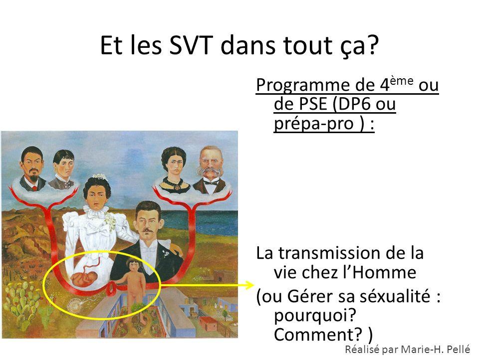 Et les SVT dans tout ça? Programme de 4 ème ou de PSE (DP6 ou prépa-pro ) : La transmission de la vie chez l'Homme (ou Gérer sa séxualité : pourquoi?