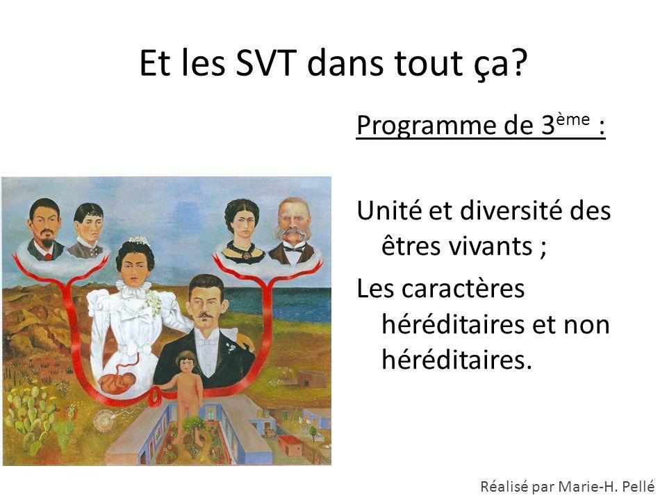 Et les SVT dans tout ça? Programme de 3 ème : Unité et diversité des êtres vivants ; Les caractères héréditaires et non héréditaires. Réalisé par Mari