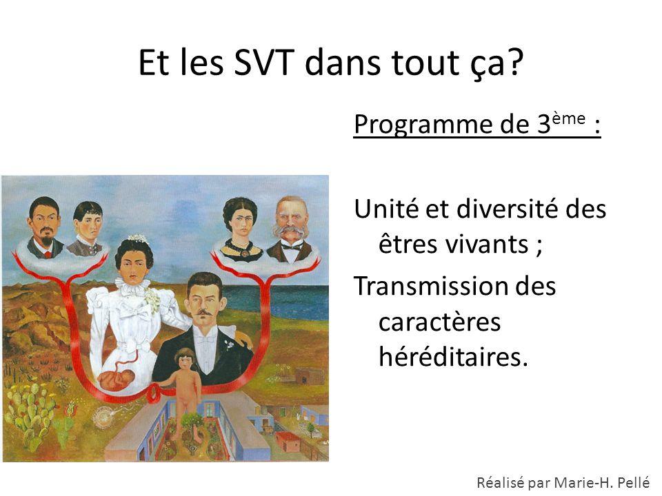 Et les SVT dans tout ça? Programme de 3 ème : Unité et diversité des êtres vivants ; Transmission des caractères héréditaires. Réalisé par Marie-H. Pe