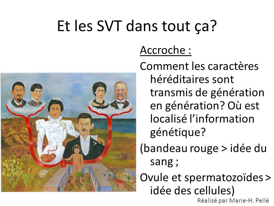 Et les SVT dans tout ça? Accroche : Comment les caractères héréditaires sont transmis de génération en génération? Où est localisé l'information génét