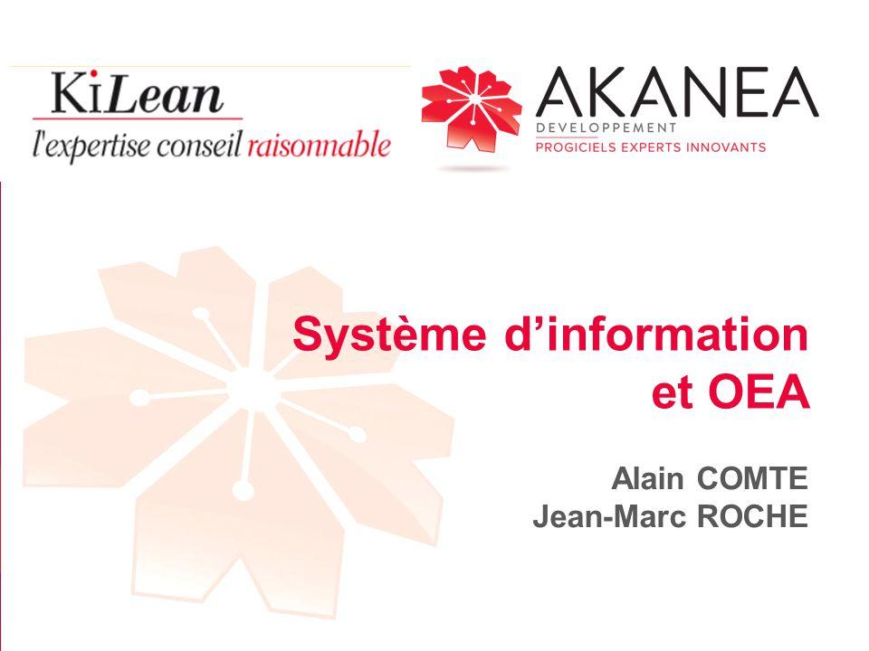 Système d'information et OEA Alain COMTE Jean-Marc ROCHE