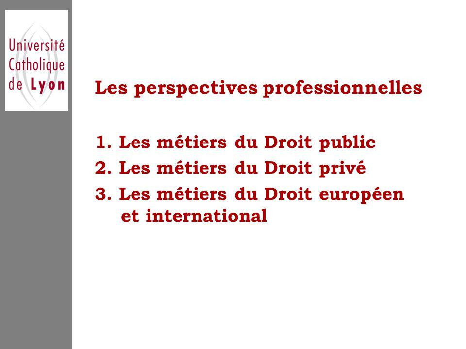 Les perspectives professionnelles 1. Les métiers du Droit public 2.