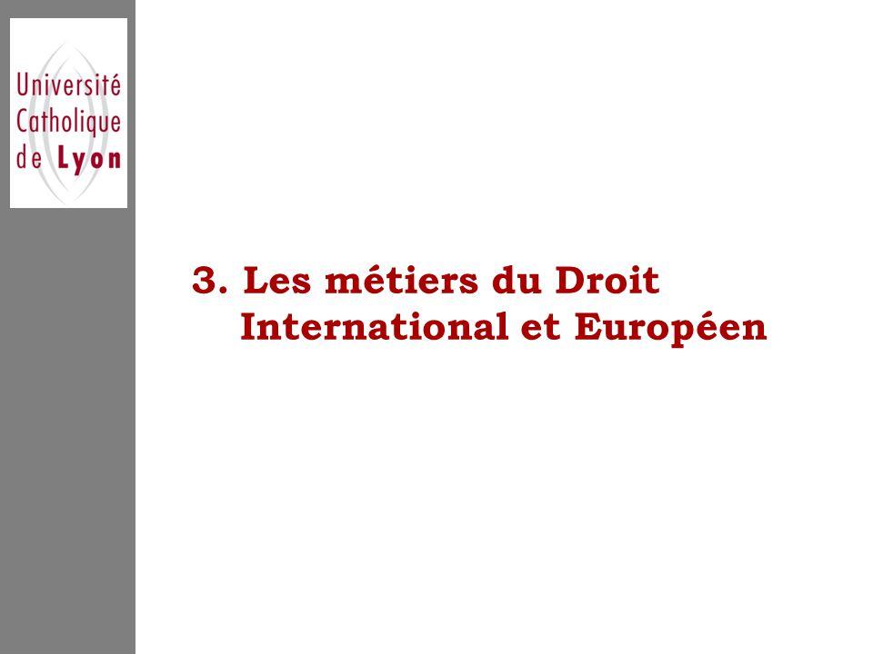 3. Les métiers du Droit International et Européen