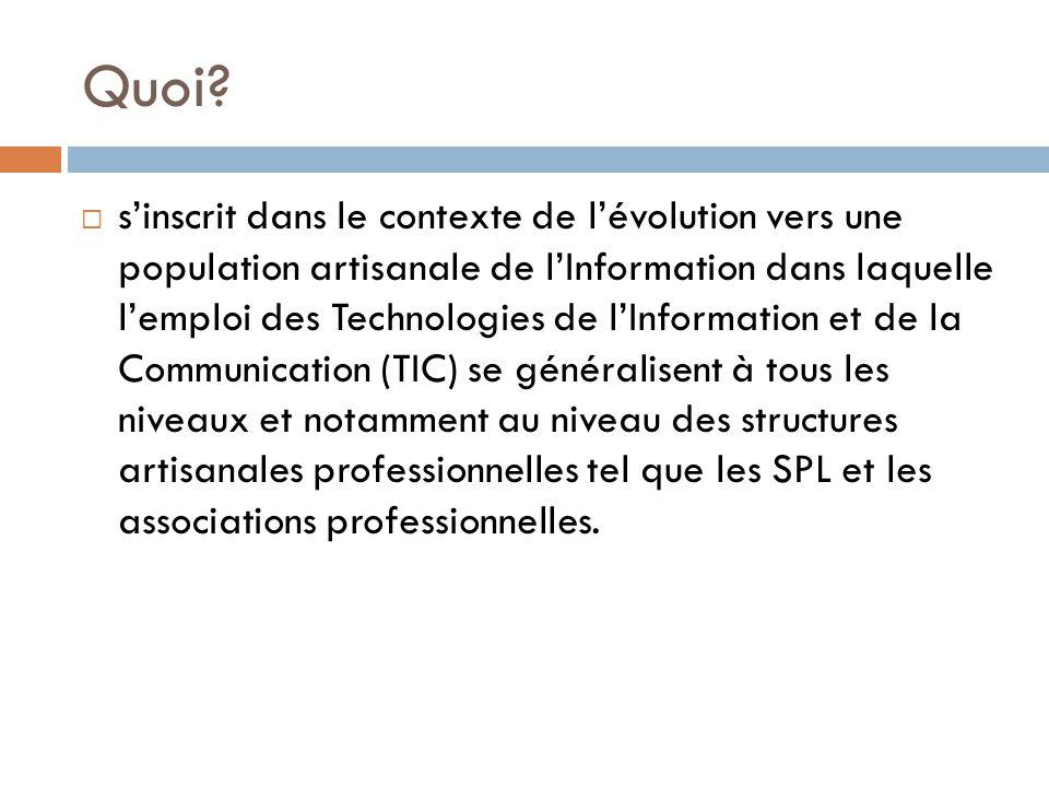 Quoi?  s'inscrit dans le contexte de l'évolution vers une population artisanale de l'Information dans laquelle l'emploi des Technologies de l'Informa