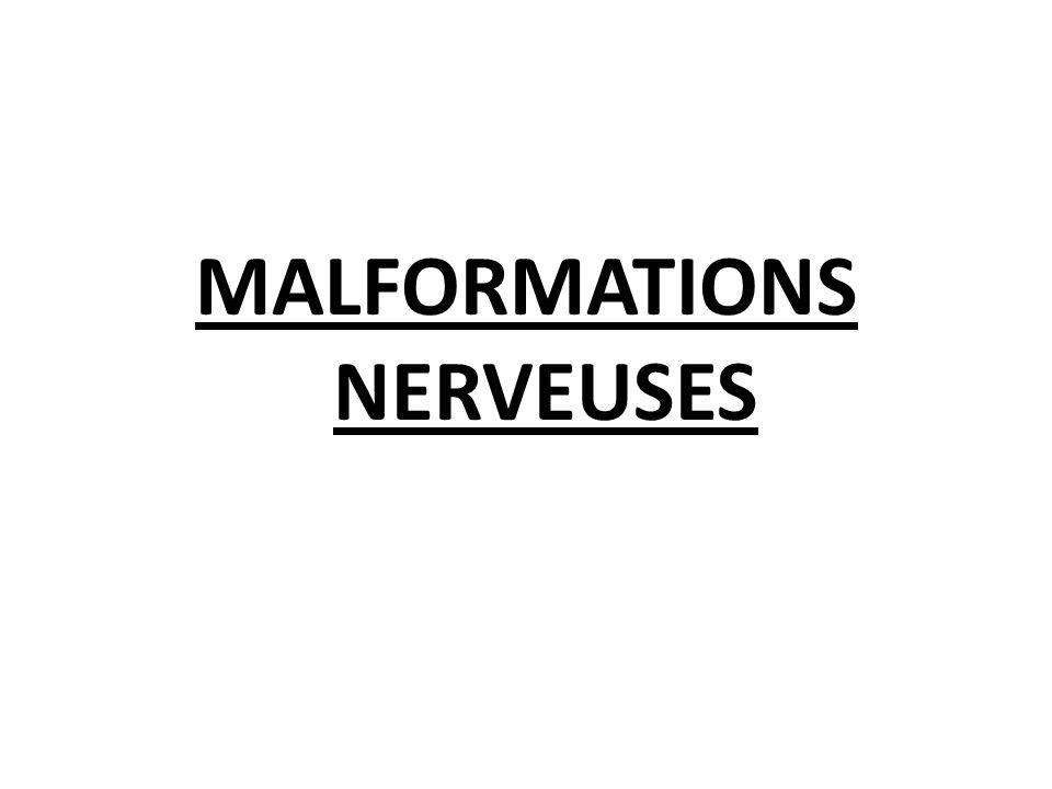 MALFORMATIONS NERVEUSES